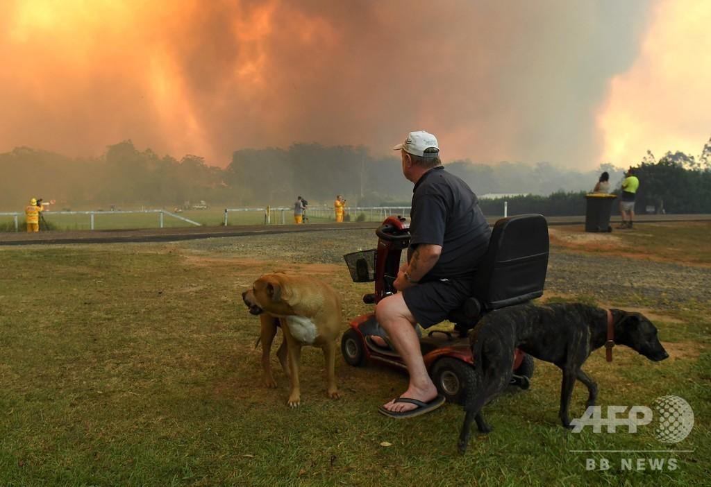 豪東部の森林火災、シドニー中心部から15キロ以内に火の手が及ぶ