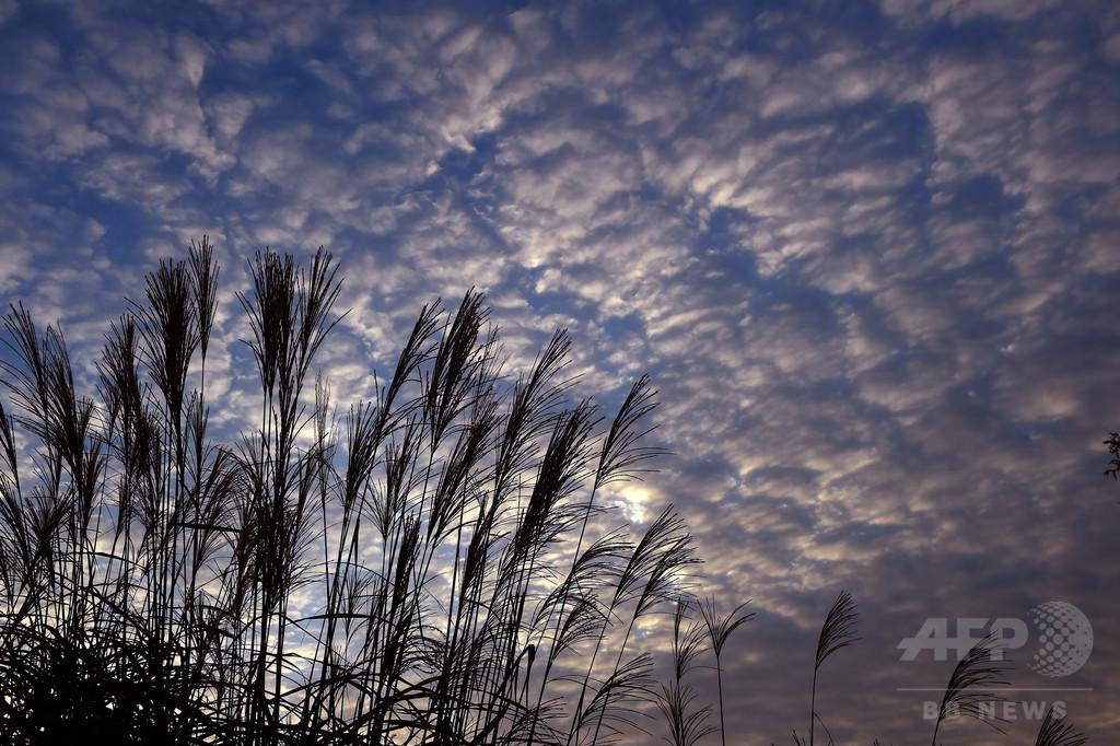 10月の世界平均気温、史上最高 年間平均も記録か