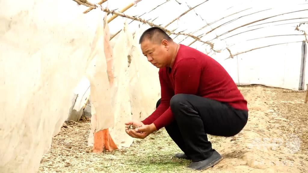 野生動物の「禁食令」に困惑する養殖農家「私たちの生活どうなる」