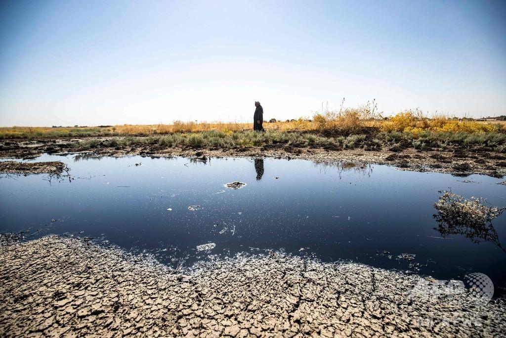 まるで黒い海…シリア北東部を襲う原油汚染