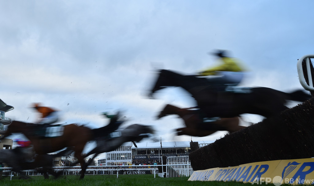 英競馬で7頭中6頭失格の珍事、分かりにくい指示が混乱招く