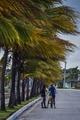 ハリケーン「イルマ」、キューバに上陸 地震被災のメキシコには「カティア」が上陸