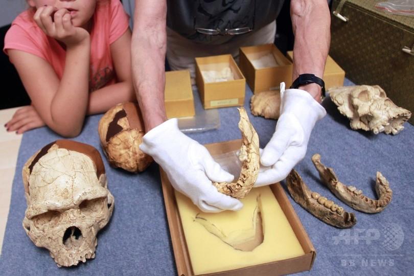 人類の進化、古代の調理器具で加速か 研究