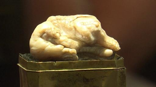 動画:世界最大の淡水真珠「眠れる獅子」、競売へ オランダ