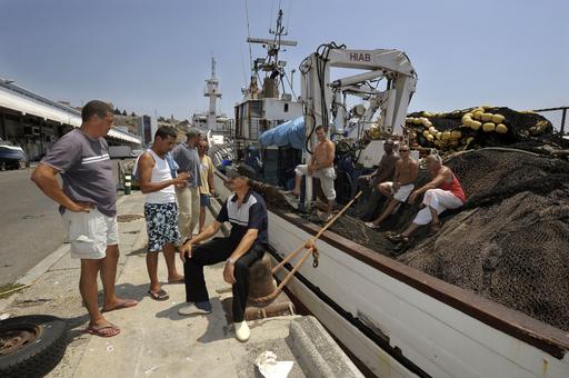 EUのマグロ禁漁前倒し、地中海の養殖業者が危機感