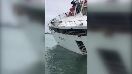 動画:羊1万4600匹を乗せた貨物船が転覆 ルーマニア沖