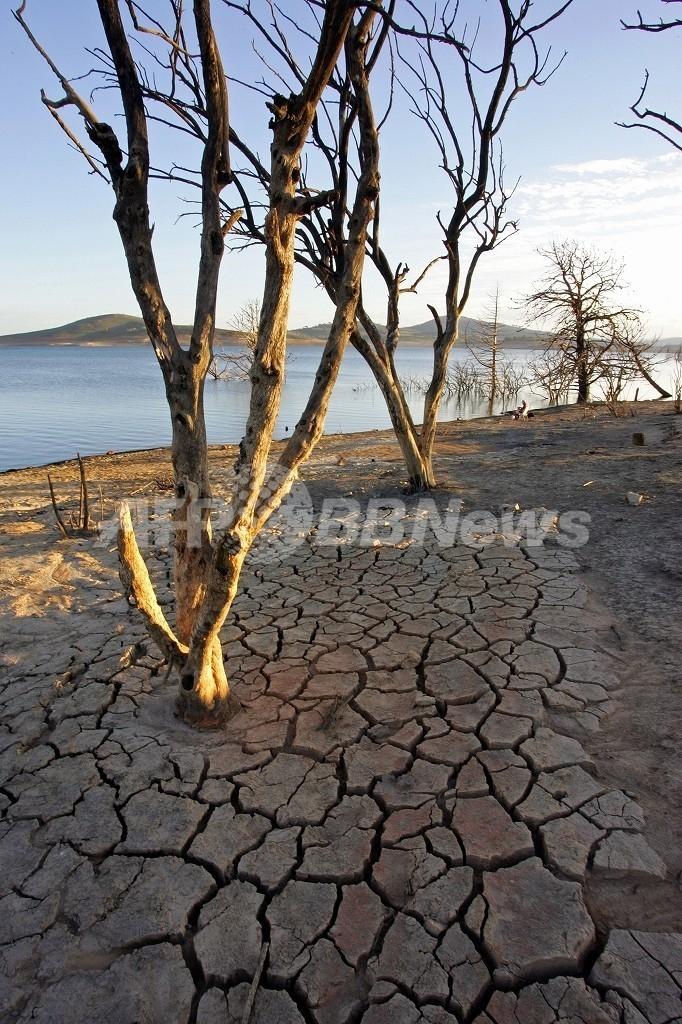 干ばつ深刻化で100万人に飲料水の危機、オーストラリア