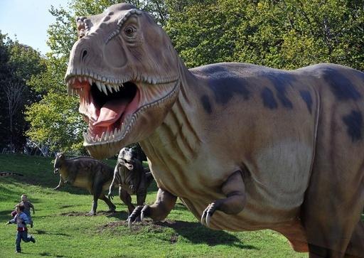 恐竜や天文学、基本知識の保有率が減少 豪州調査