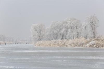 夏の漁に備え、川面から氷切り出す厳冬期 中国・東港市