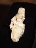 2万3000年前の石灰石製「女神」像、フランスで出土
