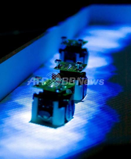 「光の道」進む小型ロボットでアリの動きを再現、米仏チーム