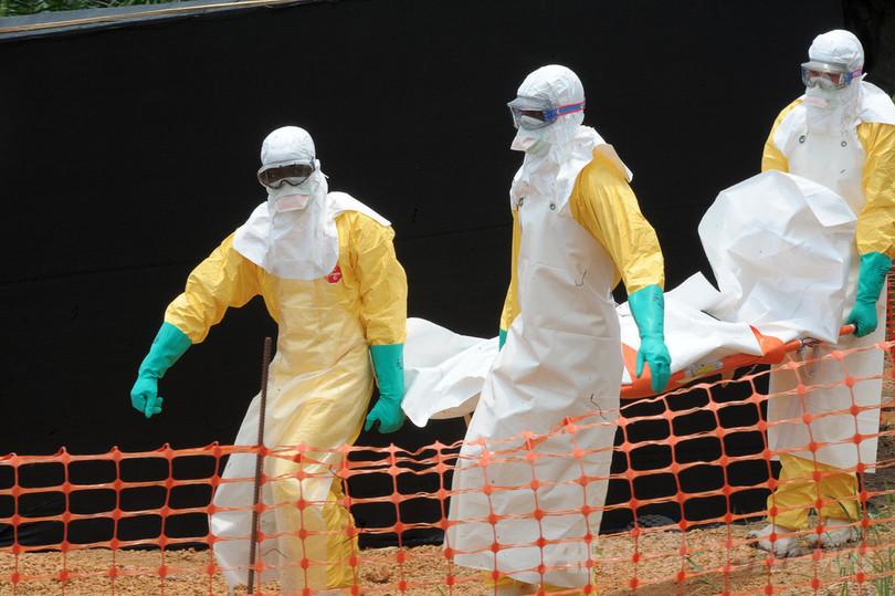 西アフリカのエボラ出血熱、「もはや制御不能」 MSF