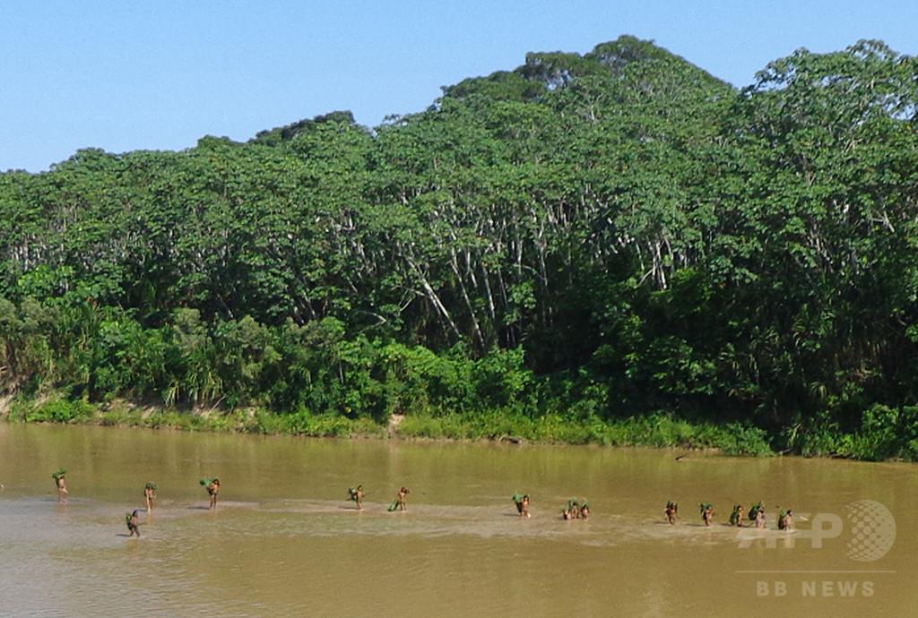 なぜ今?アマゾンの密林を出る孤立先住民族、ペルー政府困惑