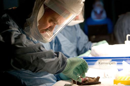 エボラ類似のウイルス性出血熱で2人死亡 ウガンダ保健省
