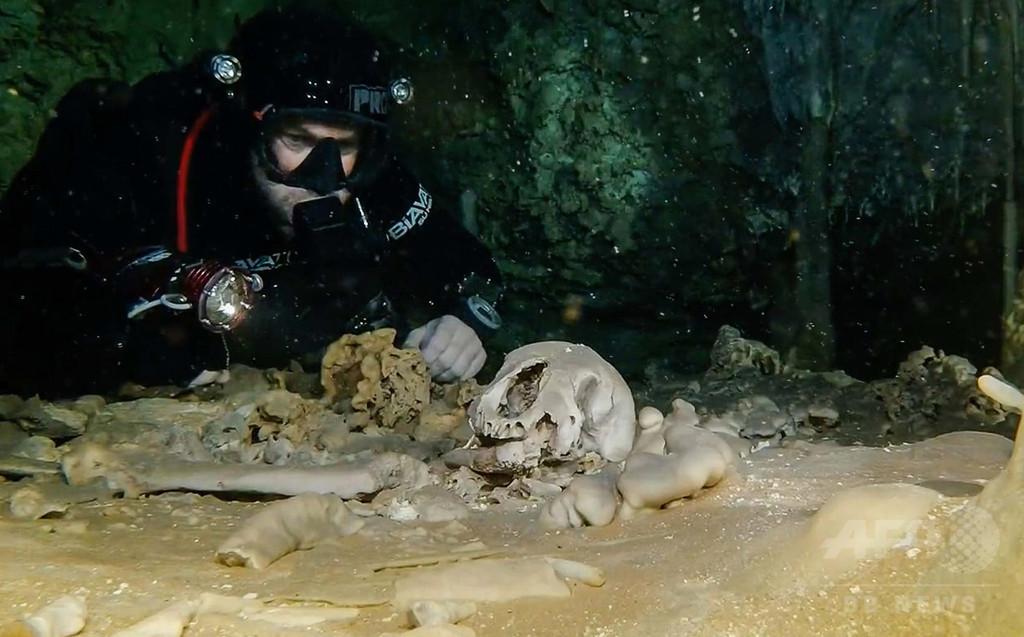 世界最大の水中洞窟でマヤ文明の遺跡や化石を発見 メキシコ
