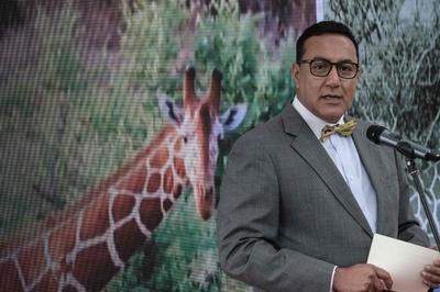 絶滅危惧種キリン、ケニアで初の個体数回復計画が発足