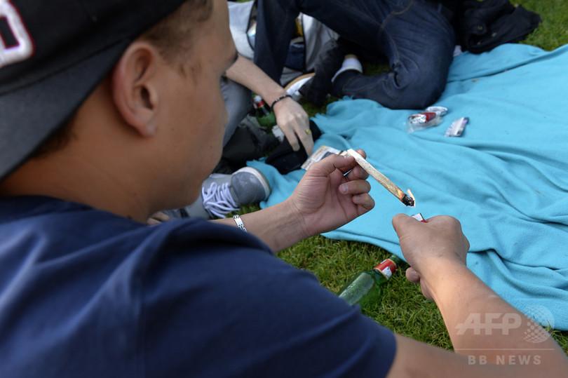 17歳未満の大麻常用、学歴や自殺リスクに差