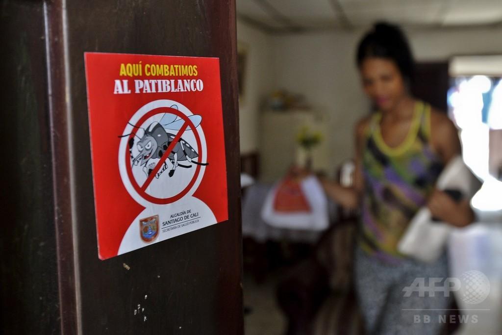ジカ熱の性感染疑い例、米で新たに14人