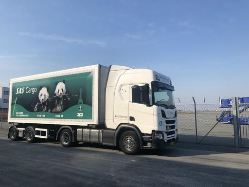 中国のパンダ、「星二」と「毛二」がデンマークに到着