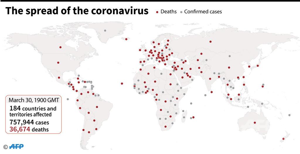 新型コロナウイルス、現在の感染者・死者数(31日午前4時時点)