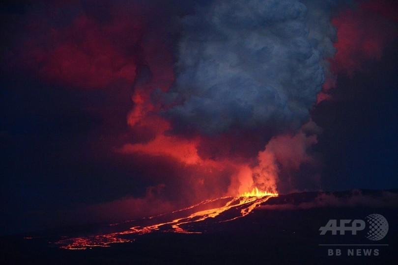 ガラパゴス諸島で火山噴火、ピンクイグアナ生息地脅かす恐れ