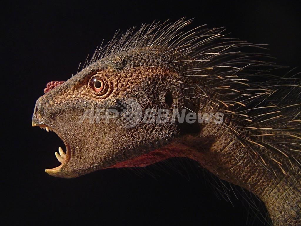 「トゲだらけの吸血鬼」、奇妙な新種恐竜を米学者が発見