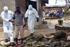 エボラ流行中心の3か国、航空便停止で孤立化