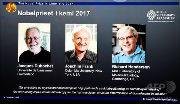 ノーベル化学賞、欧米の研究者3人に クライオ電子顕微鏡法の開発で