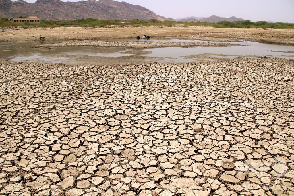 酷暑続くインド、北東部の州では1日だけで49人死亡