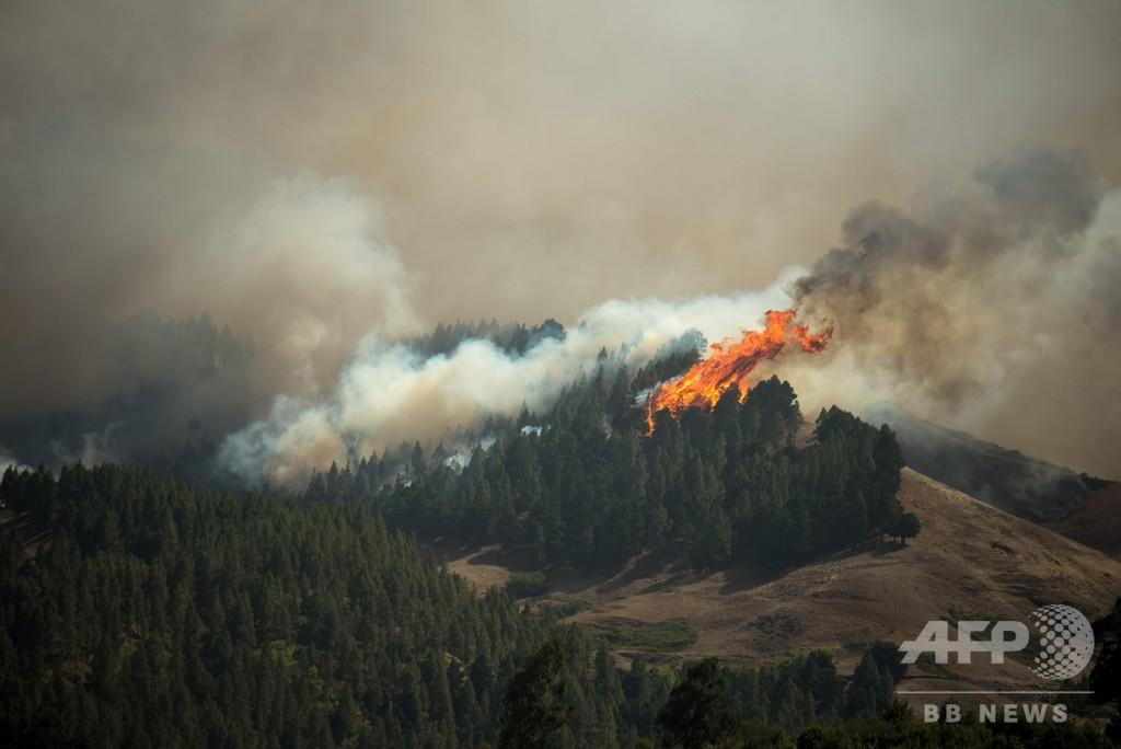 カナリア諸島で大規模な森林火災、5000人が避難
