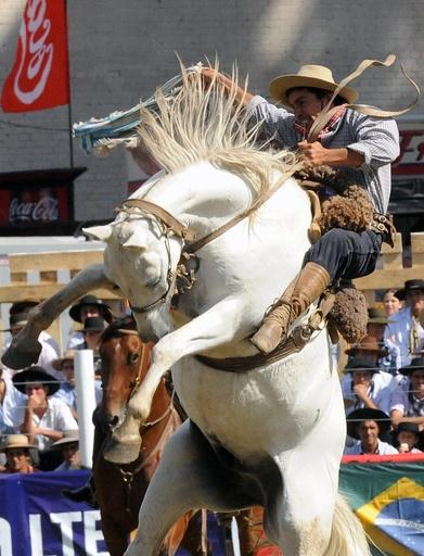 暴れ馬に挑むガウチョたち、ウルグアイで伝統のロデオ