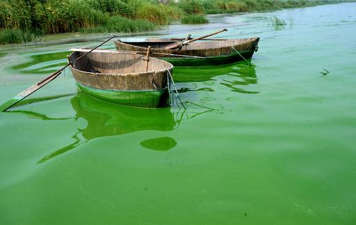 中国太湖、汚染された排水に最大15億円の罰金