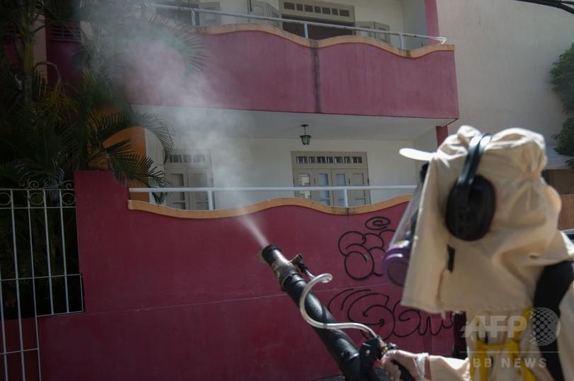 妊婦は五輪観戦自粛を、ジカ熱拡大でブラジル政府呼び掛け