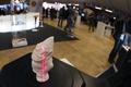 パリで「3Dプリントショー」開催