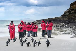 中国人南極旅行者、25%増 米国に次ぐ多さ