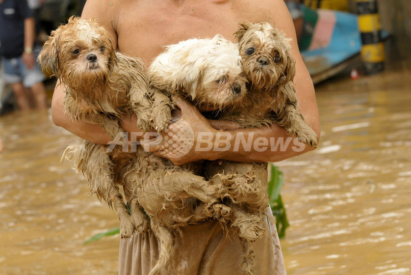 フィリピン、台風16号による死者73人に