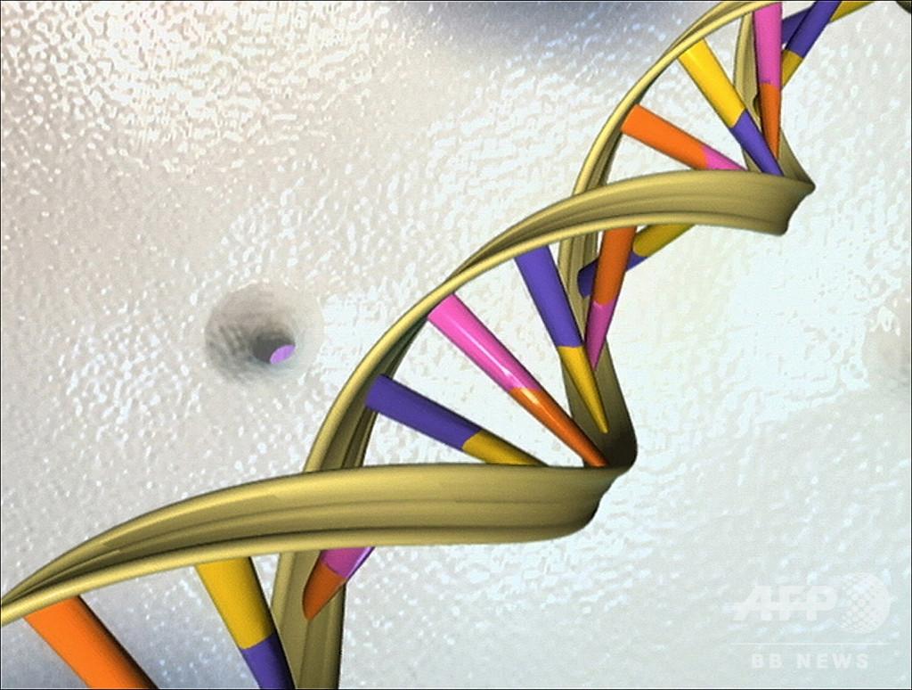 勃起不全に影響、遺伝子変異を特定 治療向上に期待