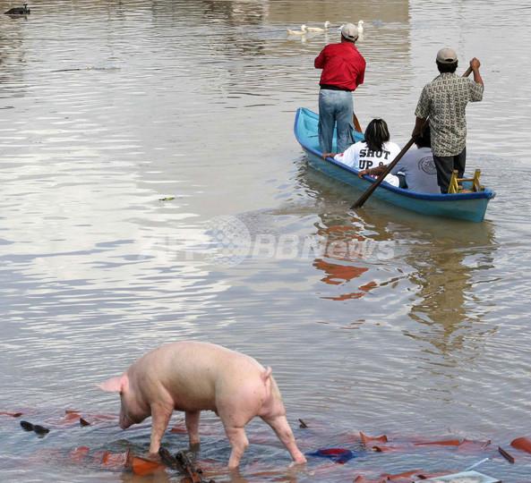 メキシコ南部の大洪水、死者1人、被災者100万人