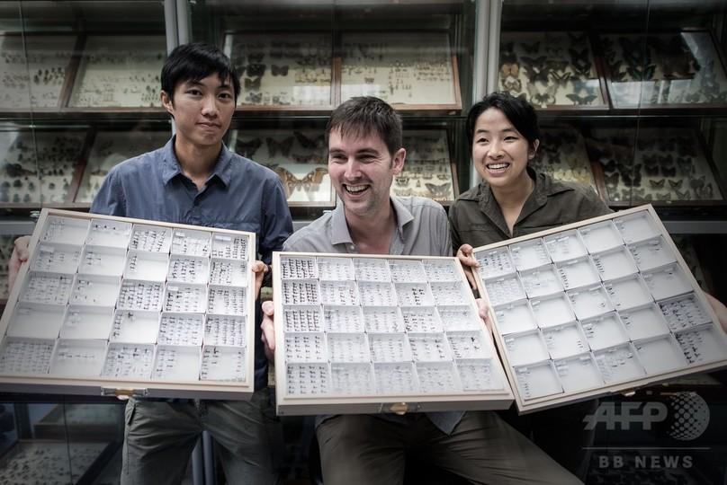 世界初の「アリ地図」公開、香港と沖縄の大学